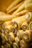 A Bin of Fresh Parsnips Royalty Free Stock Photography