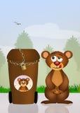 Bin garbage anti bear Royalty Free Stock Images