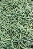 Bin of green beans Stock Images