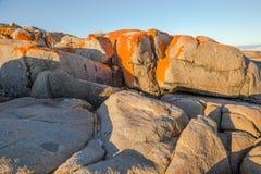 Binalong Bay Tasmania Royalty Free Stock Image