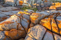 Binalong Bay Bay of Fires Stock Image