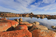 Binalong Bay Red Rocks Day Stock Image