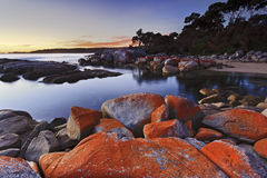 Binalong Red Rocks top. Australia Tasmania binalong bay red rocks organic origin picturesque bay of fires nature landmark in national park at beach Royalty Free Stock Images
