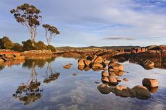 Binalong Tres Still Reflect. Australia Tasmania Bay of FIres still pacific ocean waters between boulders with red marks of bacteria reflecting at sunrise sunny Royalty Free Stock Photos