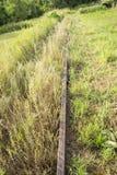 Binari ferroviari abbandonati Immagini Stock Libere da Diritti