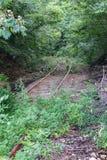 Binari ferroviari abbandonati Fotografia Stock