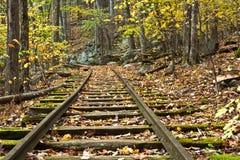 Binari ferroviari abbandonati nella caduta Immagine Stock