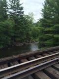 Binari ferroviari che passano il legno Fotografie Stock Libere da Diritti