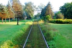 Binari ferroviari del paese Immagine Stock