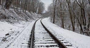 Binari ferroviari di Snowy Immagini Stock Libere da Diritti