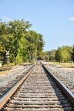 Binari ferroviari diritti che scompaiono nella distanza fotografia stock libera da diritti