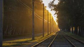 Binari ferroviari senza un treno nei raggi del tramonto fotografia stock libera da diritti