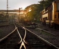 Binario del treno del carico ad alba Immagine Stock
