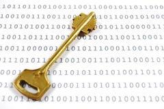 binarnych dane utajniający złotego klucza prześcieradło Obrazy Stock