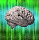 Binary brain Stock Photos