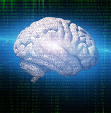 Binary brain Royalty Free Stock Photography