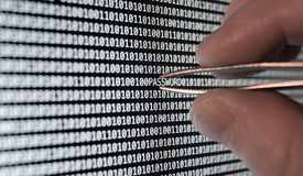 Binary Code. Password vulnerability taking out with tweezers Stock Image