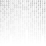 Binary code on a white background. Royalty Free Stock Photography