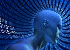 Binary Cyberspace. 3D illustrated wire-frame human head in a virtual, binary cyberspace tube Royalty Free Stock Photography