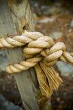 Binden Sie den Knoten Lizenzfreies Stockbild