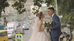 binder crystal smycken för parcravaten bröllop Älskvärd brudgum och brud bröllop för tappning för klädpardag lyckligt långsam rör arkivfilmer