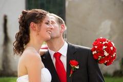 binder crystal smycken för parcravaten bröllop Royaltyfria Bilder