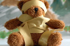 Binding bear toy. Royalty Free Stock Photo