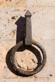 Bindung der eisernen Pferde Stockbild