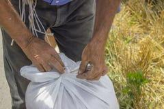 Bindung des Knotens auf Korntasche stockbild