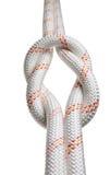 Bindung mit zwei Seilen im Riffknoten Stockbilder