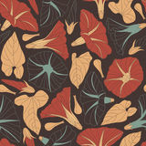 Bindweed. On a dark background in seamless pattern Royalty Free Stock Photos