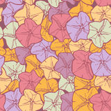 Bindweed floral seamless pattern flowers contours pink lilac blue orange on maroon background hand-drawn. Vector Royalty Free Stock Photo