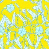 Bindweed floral seamless pattern light green blue branch with leaves buds and flowers contours on yellow background hand-drawn. Ve Royalty Free Stock Images