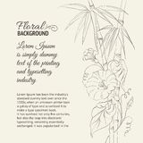 Bindweed flower and bamboo. Bindweed flower and bamboo isolated on sepia. Vector illustration Stock Photos