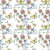 Bindweed flower,  butterfly, watercolor, pattern seamless. Bindweed  flower butterfly bouquet watercolor  pattern seamless white background  handmade Royalty Free Stock Images