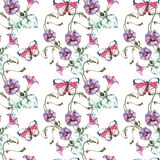 Bindweed flower,  butterfly, watercolor, pattern seamless Stock Image