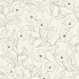 Bindweed flower seamless pattern. Vector illustration Royalty Free Stock Photography