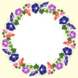 Bindweed frame round congratulation. Frame with a wreath round for congratulation on a yellow background with a white center decorated with a pattern of Stock Image