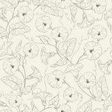 Bindweed kwiatu bezszwowy wzór. ilustracja wektor
