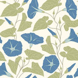 Bindweed. On a white background in seamless pattern Royalty Free Stock Photos
