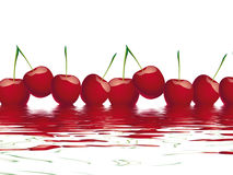 Bing cherry Royalty Free Stock Image