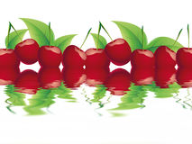 Bing cherry Stock Photo