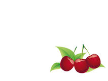 Bing cherry Stock Photos