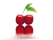 Bing cherry Royalty Free Stock Photography