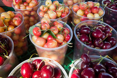 Bing and royal ann cherries. In clear cups Stock Image
