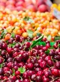 Bing- und Ranier-Kirschen stockfotos