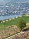 Bingen Stock Photography