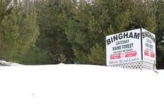 Bingham Maine Fotos de Stock
