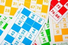 bingo чешет цветы различные Стоковое фото RF
