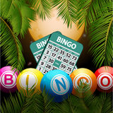 Bingo balls and cards over moon and palm trees. Bingo Balls and Cards Over Tropical Night Background with Palm Trees and Moon Royalty Free Stock Photography